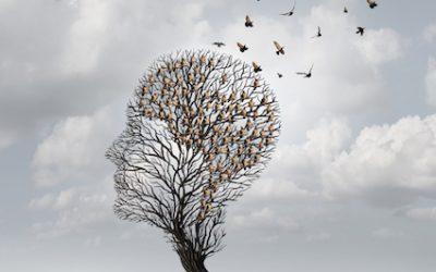 Mindfulness ir streso valdymo programa